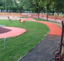 Koprivnica gradski park (2)