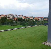 Zagreb dekorativna (1)